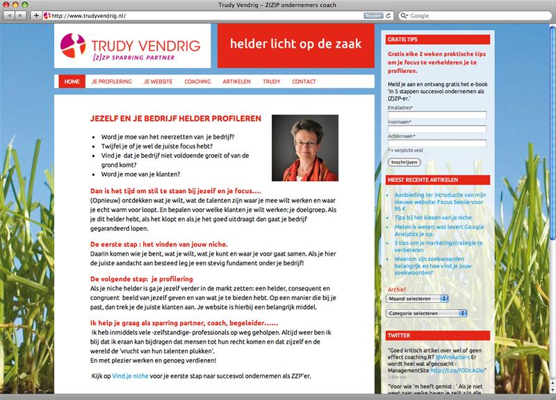 website ontwerp en uitvoering met Wordpress