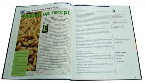 pagina layout Taallijnen schoolboek