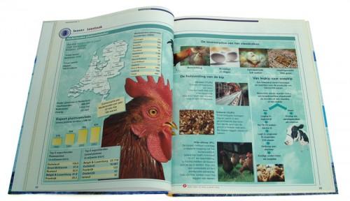 opmaak lesboek Nederlands voor uitgeverij Malmberg