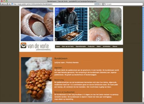 webdesign Van de Vorle