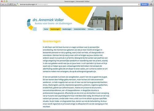 website ontwerp BLS
