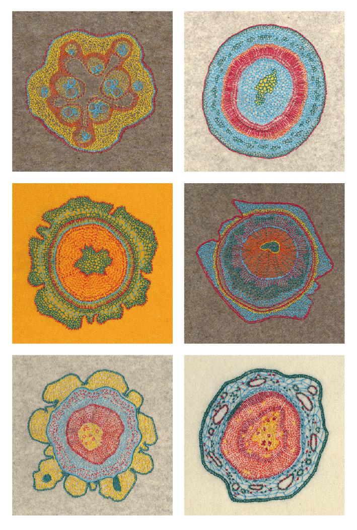 Growing - set ansichtkaarten met geborduurde plantencellen